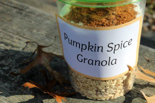 Pumpkin Spice Granola 2