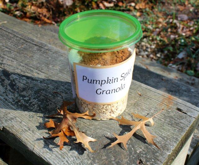 Pumpkin Spice Granola 4