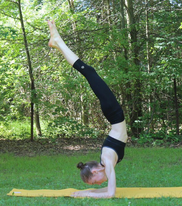 Forearm Stand   Strength and Sunshine